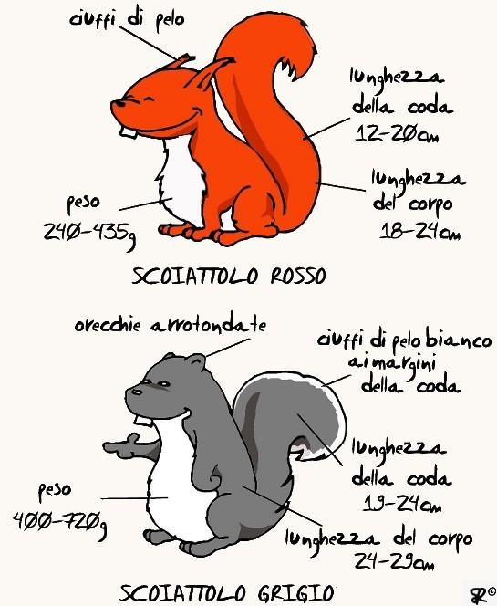 comparison5b